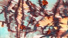 Fan brush water strong paint cross slash Briar Hedge