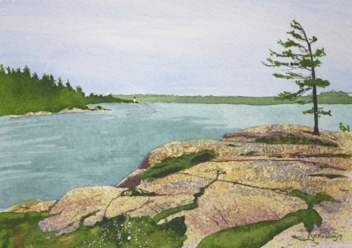 C6 - Killbear Park, looking toward Lighthouse Point - Pamela Fielding