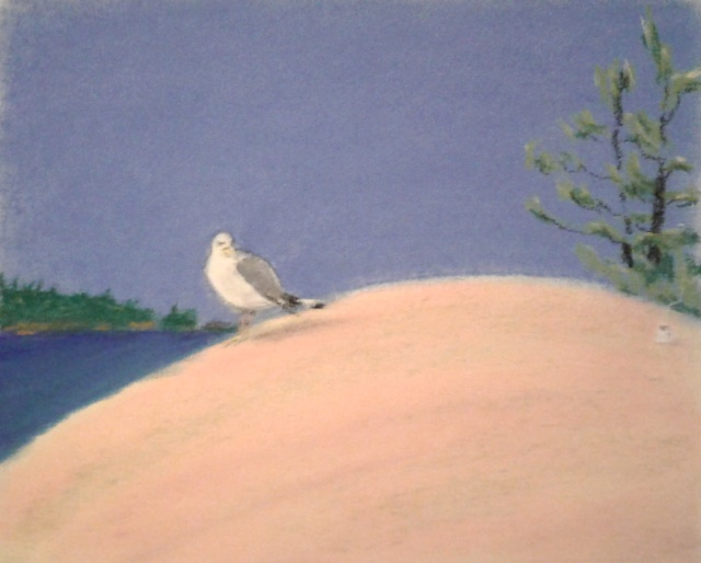 Killbear Park - coffee on the sweep of granite with the gull